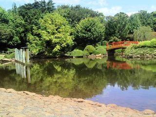 Japanese gardens (5)
