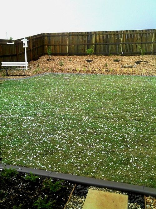 Backyard hail