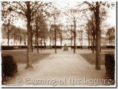 the Louvre parks by night (6)